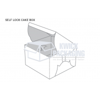 self_lock_cake_box_(1)